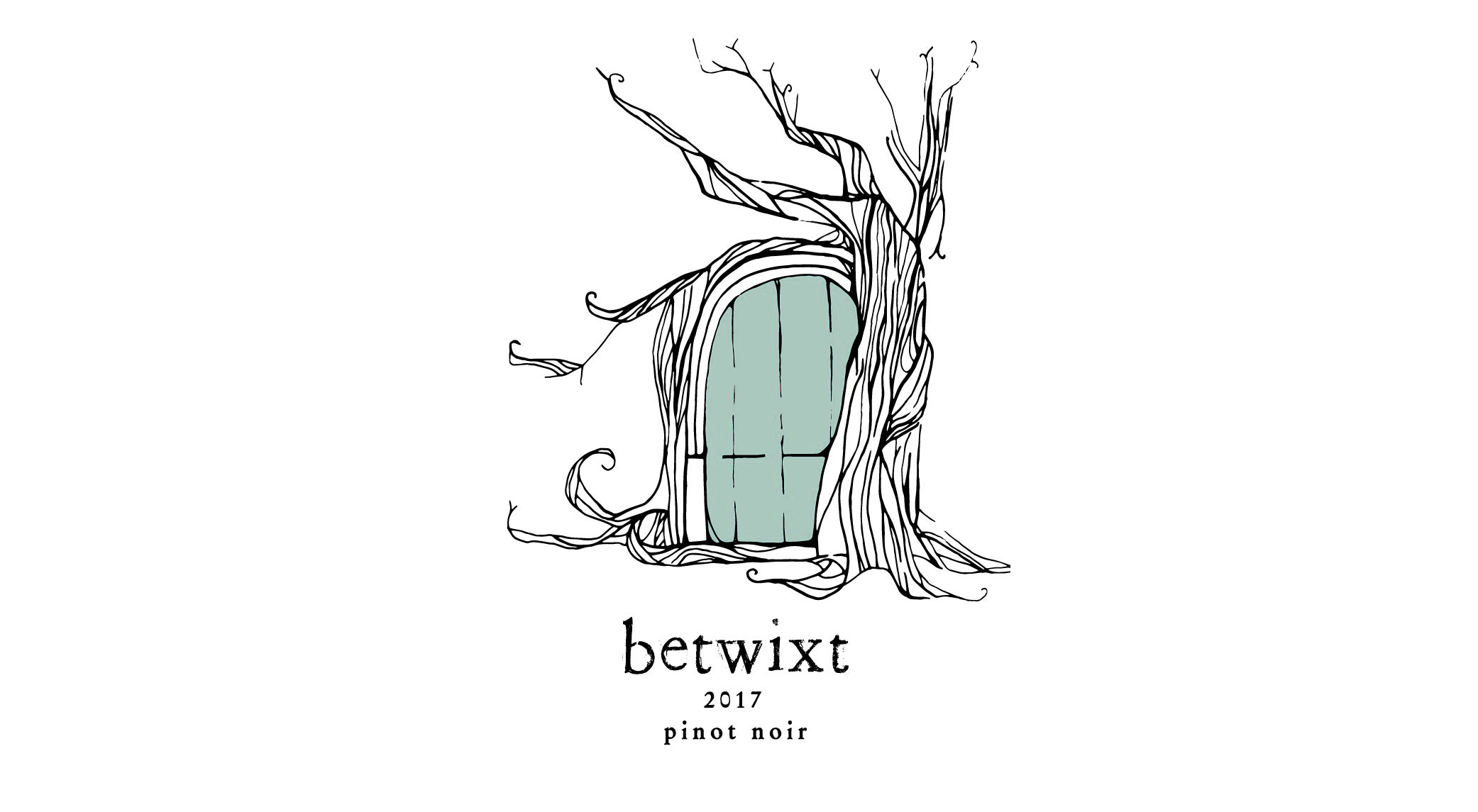 betwixt_lester_pinot_2017_whitebackground